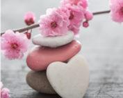 cailloux fleur